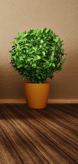 pest-control-home-plant